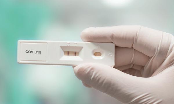 Panodyne Antigen Covid-19 Rapid test kits, (Pack of 6) £12.95 per test  (EX VAT)